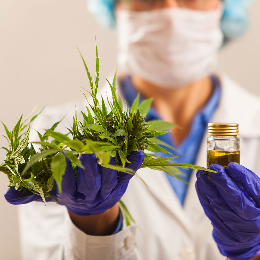 Cannabis oils and formulations